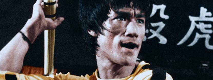 Bruce Lee Banner école